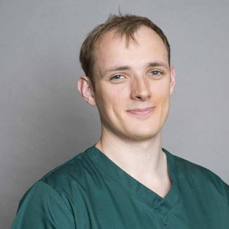 Ben Hastings, Dentist